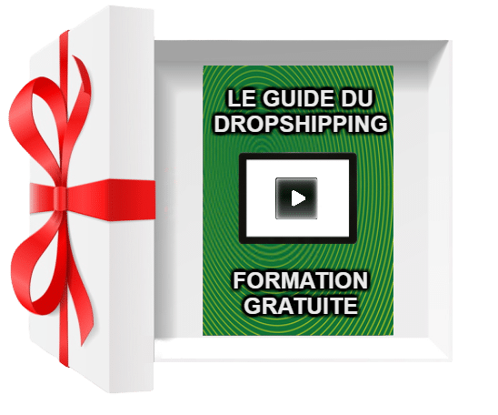 Formation gratuite dropshipping